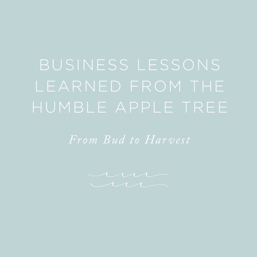 Business Lessons | via the Rising Tide Society