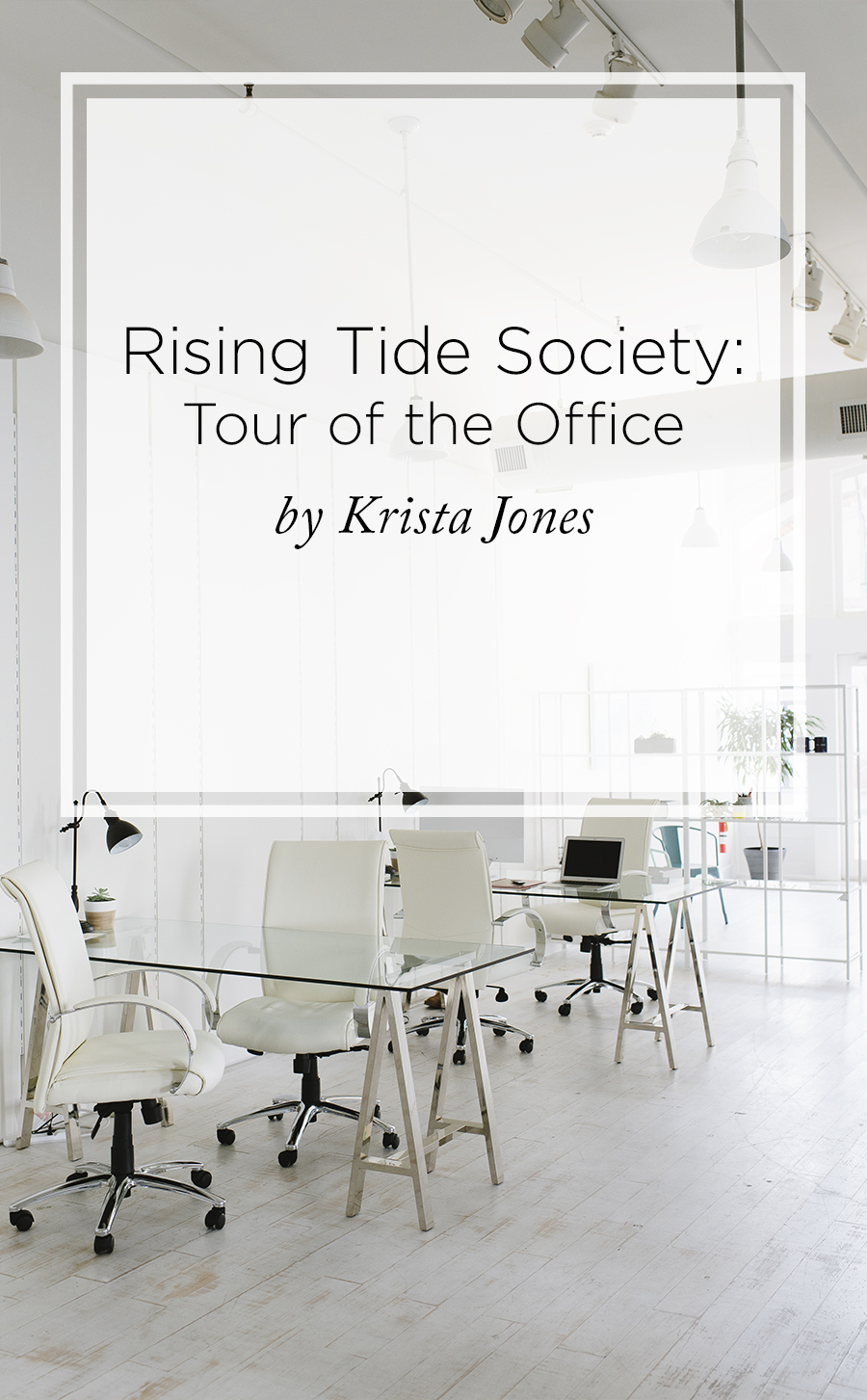 Rising Tide Society Reveals New Office