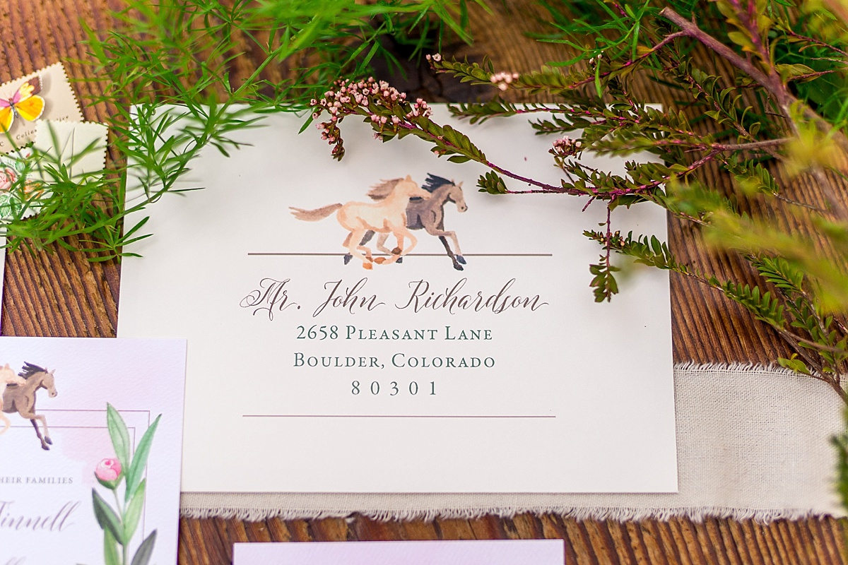 View More: http://brooketysonphotography.pass.us/equestrianstyledshoot